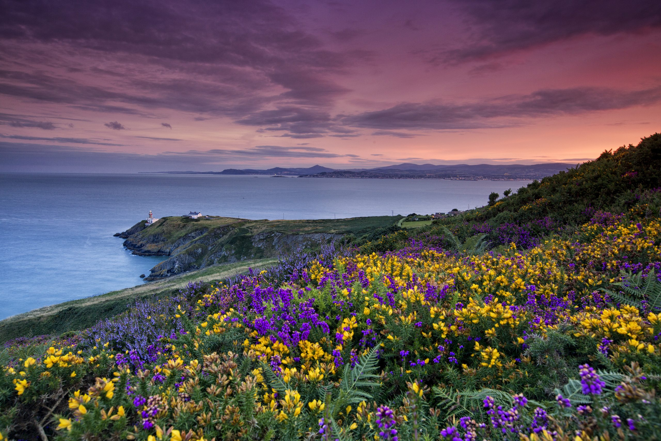 Spectacular coastal scenery along Ireland's Ancient East with Day Tours Unplugged